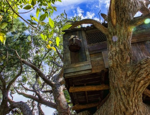 Denmark's New Tree House Hotel